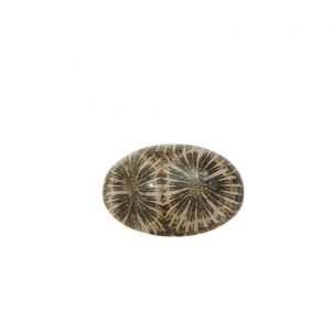 Cabochon di corallo naturale